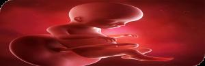 تاثیر-دیابت-بارداری-بر-کودک