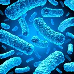 علائم واژینوز باکتریال چیست